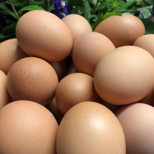 braunschalige Eier